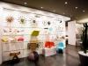 Inaugurazione nuovo negozio iLiving in centro a Dolo